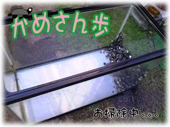 20120505-1.JPG